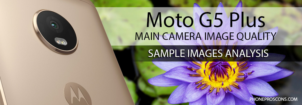 Moto G5 Plus rear camera with image of a flower