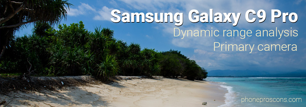 low dynamic range image of a beach and trees